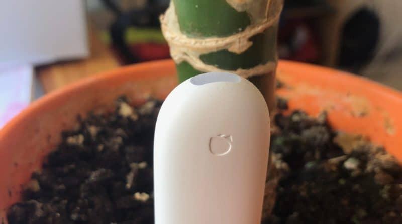 Smarthome Gadget: Xiaomi Flower Care Pflanzensensor